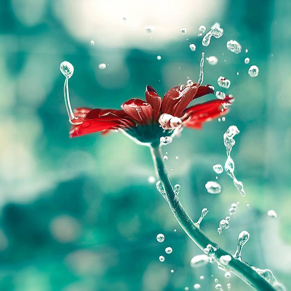 2月22日(水)『朝の聖句#1350』