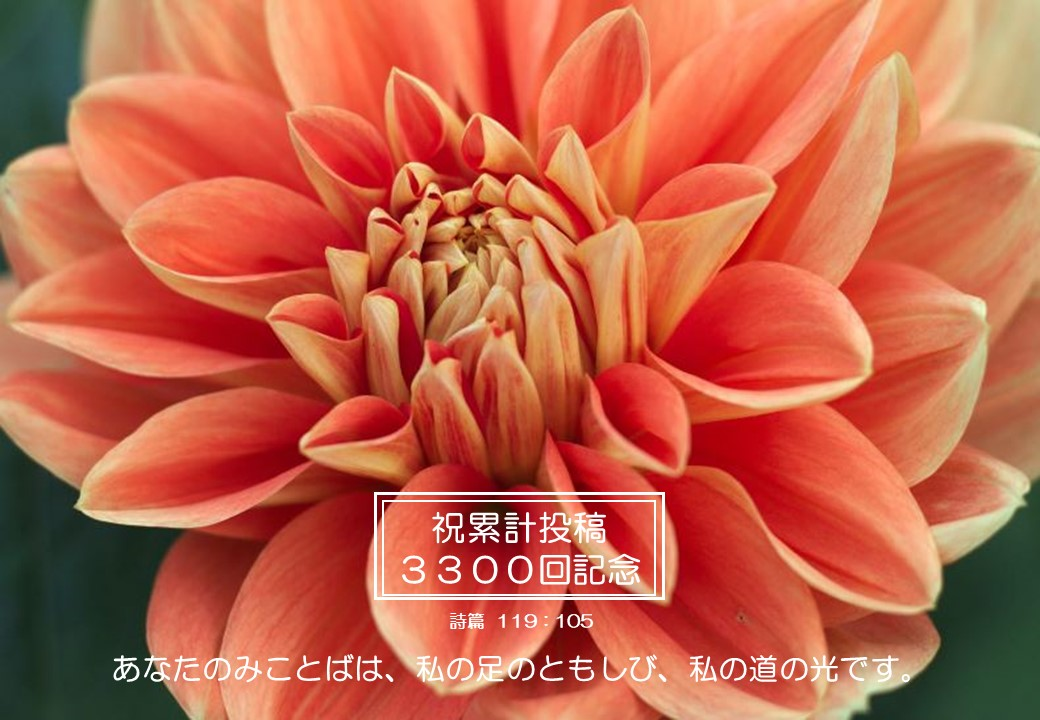 9/3㈮累計投稿#3300・記念投稿・感謝の朝です♪